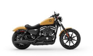 Sportster Iron 883™ 2019