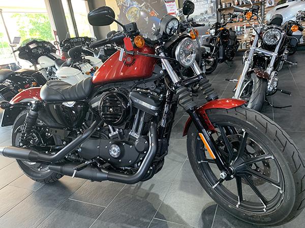 XL 883 Iron 2019